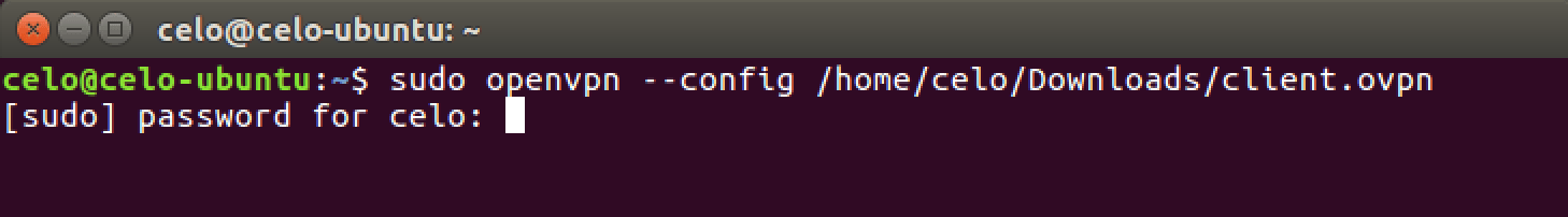 linux-openvpn-terminal